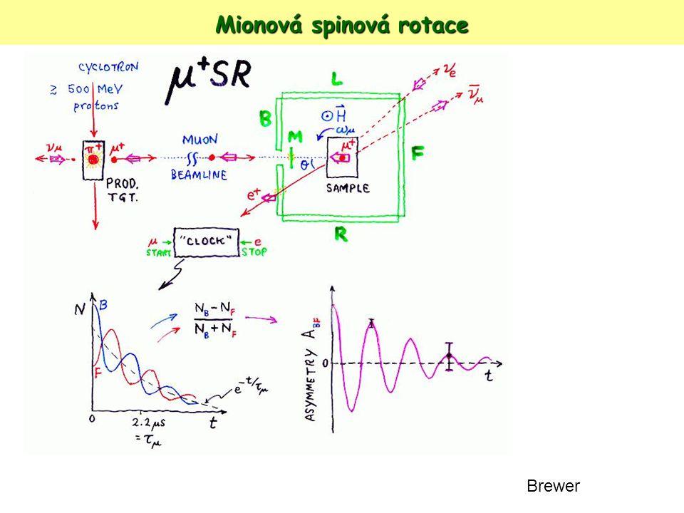 Mionová spinová rotace Brewer