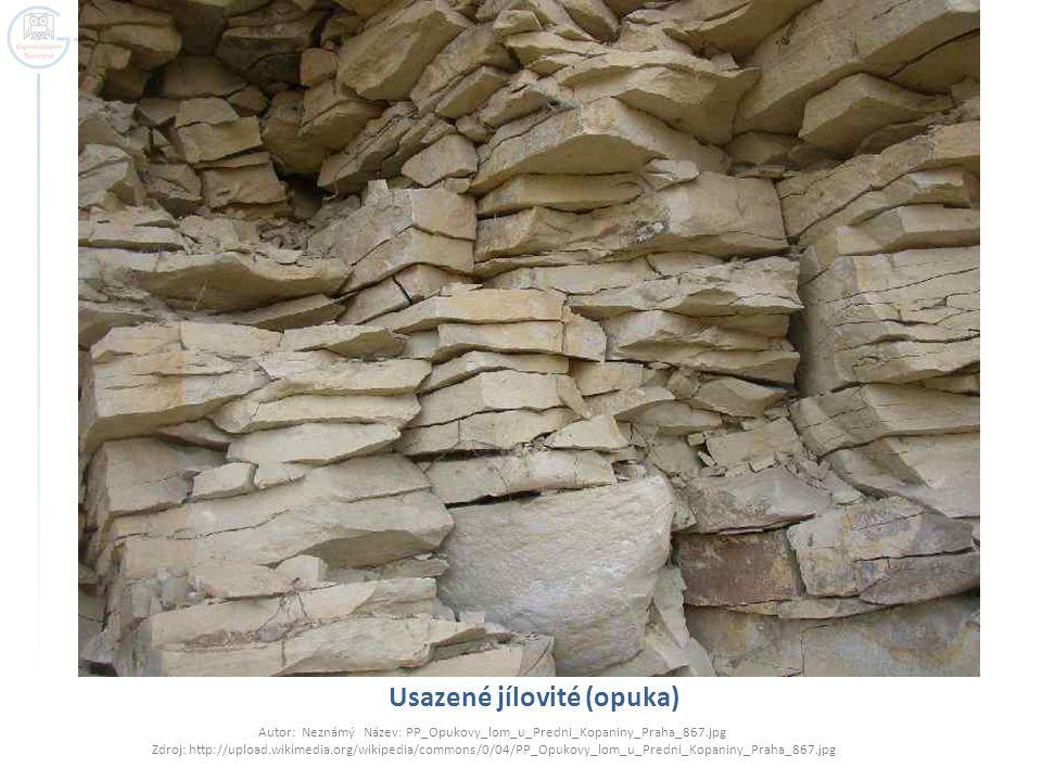 Usazené jílovité (opuka) Autor: Neznámý Název: PP_Opukovy_lom_u_Predni_Kopaniny_Praha_867.jpg Zdroj: http://upload.wikimedia.org/wikipedia/commons/0/0