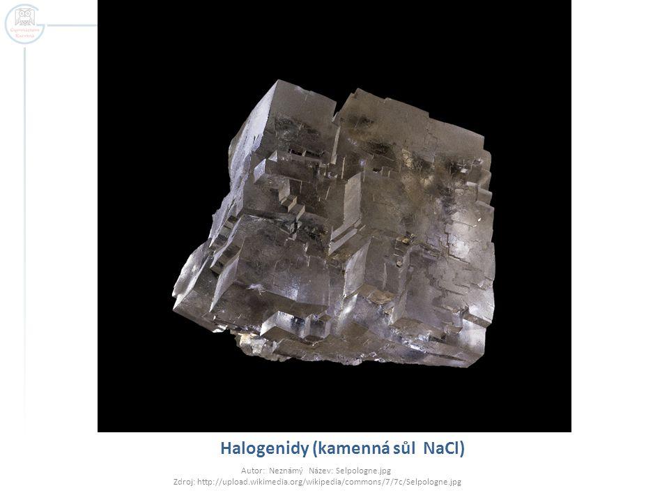 Halogenidy (kamenná sůl NaCl) Autor: Neznámý Název: Selpologne.jpg Zdroj: http://upload.wikimedia.org/wikipedia/commons/7/7c/Selpologne.jpg
