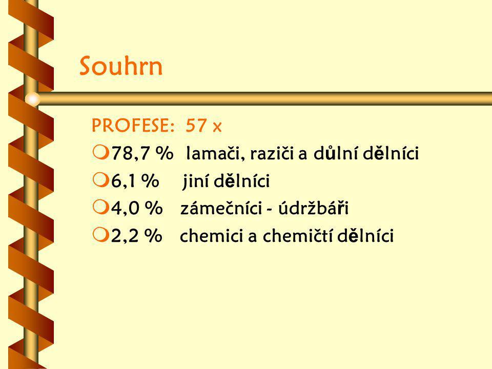 Souhrn PROFESE: 57 x m m 78,7 % lamači, raziči a d ů lní d ě lníci m m 6,1 % jiní d ě lníci m m 4,0 % zámečníci - údržbá ř i m m 2,2 % chemici a chemičtí d ě lníci