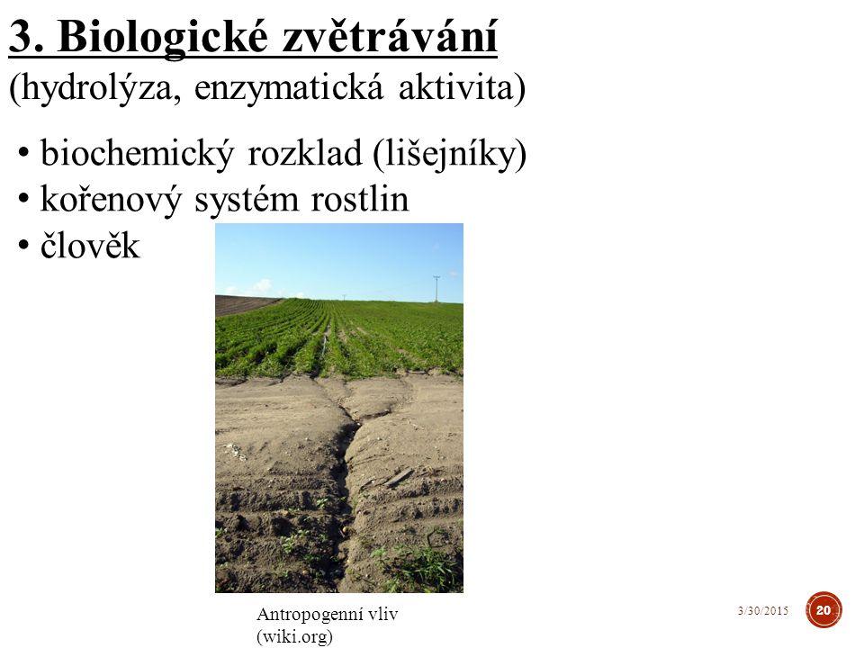 3. Biologické zvětrávání (hydrolýza, enzymatická aktivita) biochemický rozklad (lišejníky) kořenový systém rostlin člověk Antropogenní vliv (wiki.org)