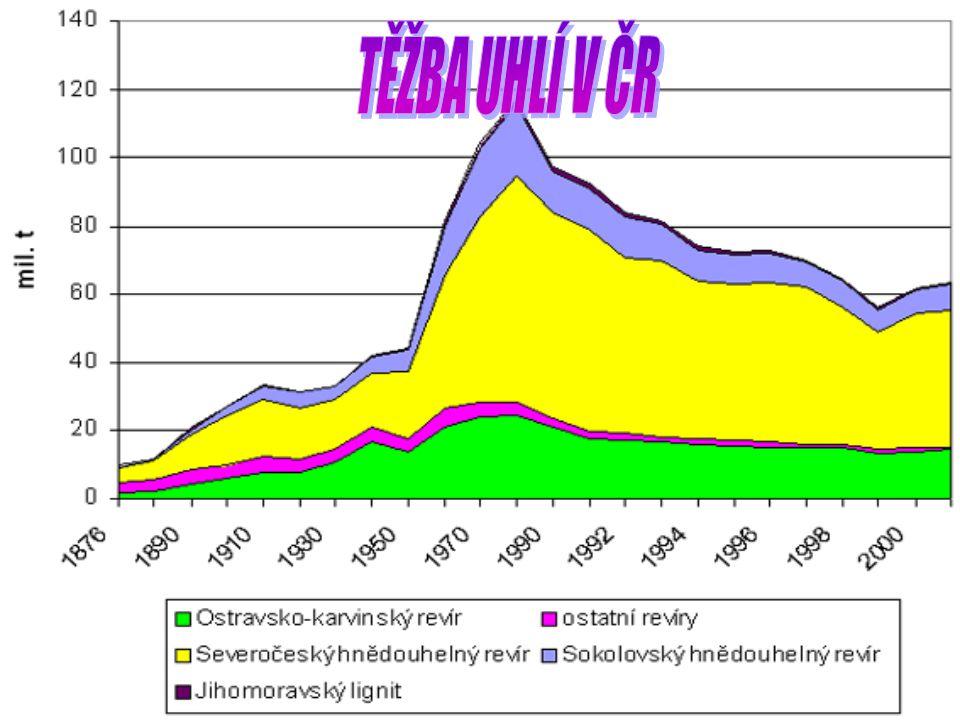 Těžba uhlí v Evropě stagnuje,za posledních dvacet let poklesla o polovinu.Ovšem na kontinentě se nalézá zhruba třetina všech světových zásob.Největším evropským producentem je Rusko následované Německem, pak Polsko,Ukrajina,Řecko a Česká republika.