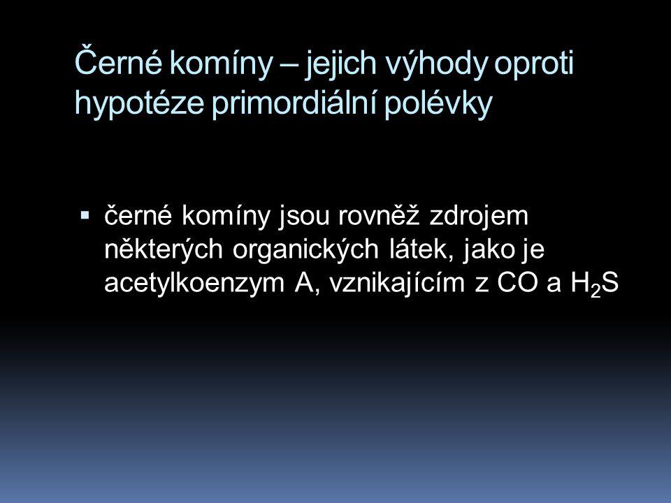 Černé komíny – jejich výhody oproti hypotéze primordiální polévky  černé komíny jsou rovněž zdrojem některých organických látek, jako je acetylkoenzy