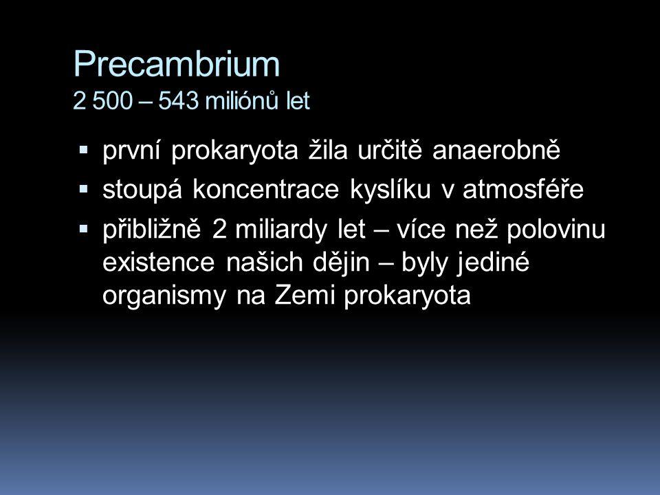 Precambrium 2 500 – 543 miliónů let  první prokaryota žila určitě anaerobně  stoupá koncentrace kyslíku v atmosféře  přibližně 2 miliardy let – víc