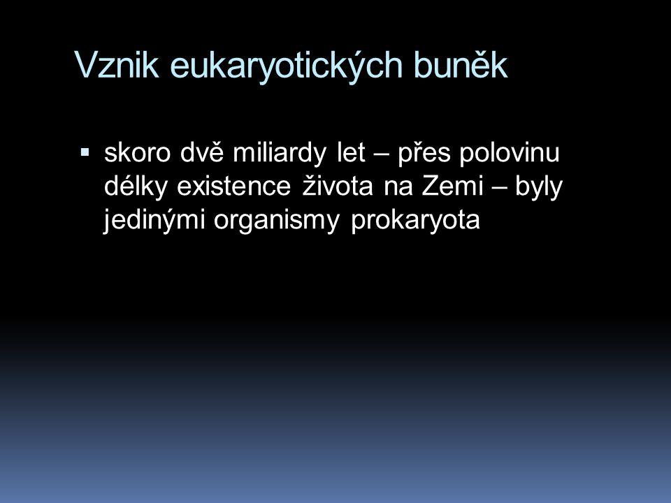 Vznik eukaryotických buněk  skoro dvě miliardy let – přes polovinu délky existence života na Zemi – byly jedinými organismy prokaryota