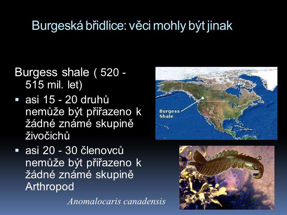 Burgeská břidlice: věci mohly být jinak Burgess shale ( 520 - 515 mil. let)  asi 15 - 20 druhů nemůže být přiřazeno k žádné známé skupině živočichů 