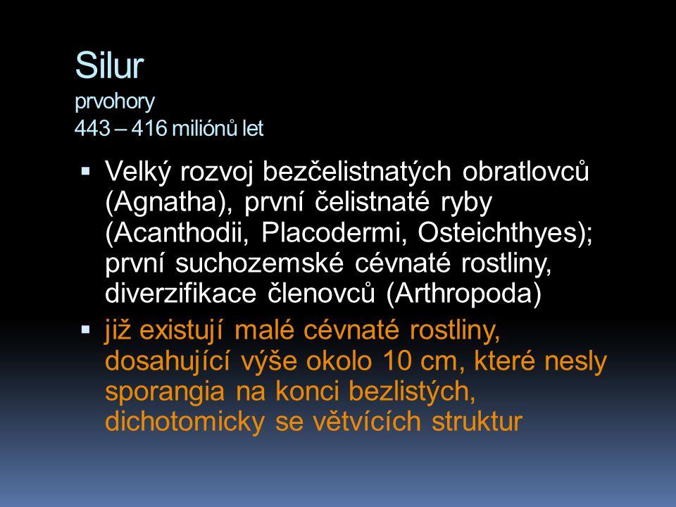 Silur prvohory 443 – 416 miliónů let  Velký rozvoj bezčelistnatých obratlovců (Agnatha), první čelistnaté ryby (Acanthodii, Placodermi, Osteichthyes)