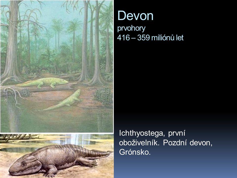 Devon prvohory 416 – 359 miliónů let Ichthyostega, první oboživelník. Pozdní devon, Grónsko.