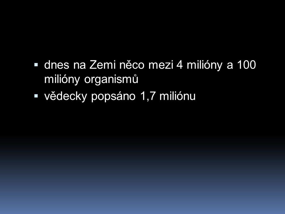  dnes na Zemi něco mezi 4 milióny a 100 milióny organismů  vědecky popsáno 1,7 miliónu