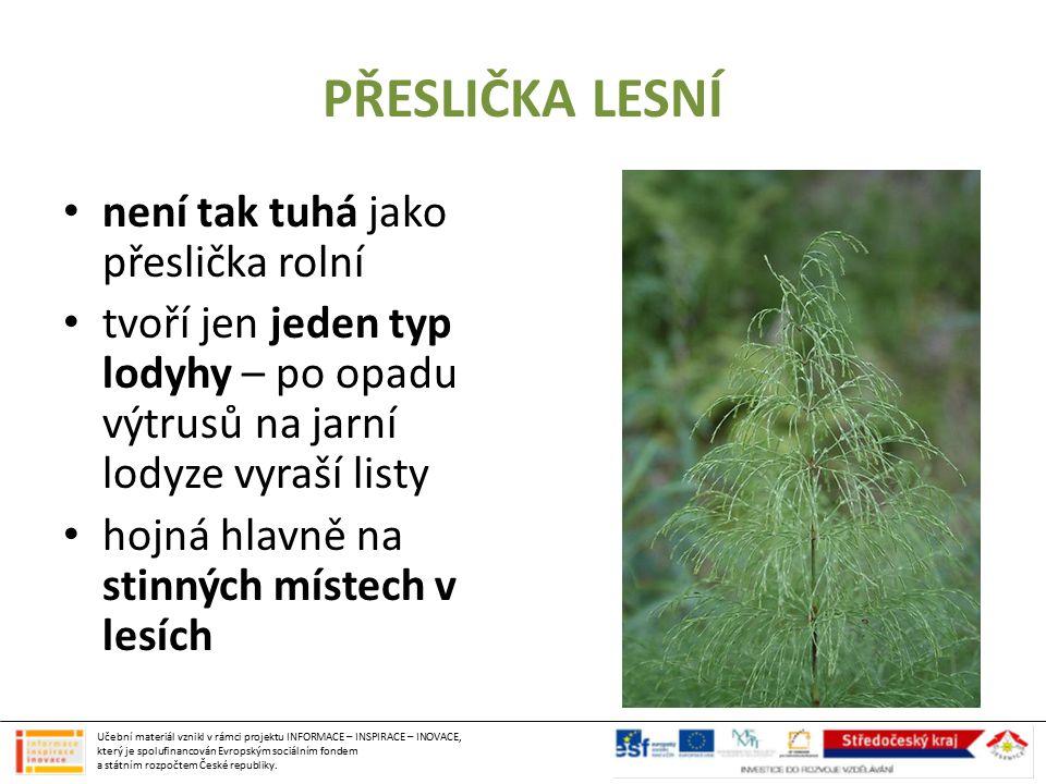 oddělení: KAPRADINY nejdokonalejší kapraďorosty bylinné i stromovité druhy mají dobře vyvinuté listy, jsou vytrvalé rozmnožují se výtrusy, které opadávají z výtrusných kupek, uložených na spodní straně listů Oddělení: KAPRADINY Učební materiál vznikl v rámci projektu INFORMACE – INSPIRACE – INOVACE, který je spolufinancován Evropským sociálním fondem a státním rozpočtem České republiky.