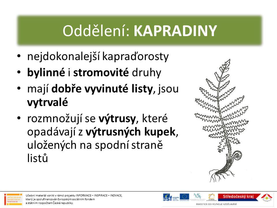 ŽIVOTNÍ CYKLUS KAPRADIN 1) dospělá rostlina 2) list s výtrusnými kupkami 3) vypadávající výtrusy 4) klíčící prokel 5) oplození (samčí pelatky, samičí zárodečníky) 6) klíčící dospělá rostlina 1 2 3 4 5 6 Učební materiál vznikl v rámci projektu INFORMACE – INSPIRACE – INOVACE, který je spolufinancován Evropským sociálním fondem a státním rozpočtem České republiky.