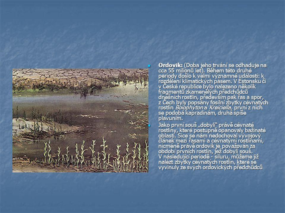 Ordovik: (Doba jeho trvání se odhaduje na cca 55 milionů let).