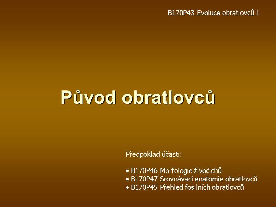 Původ obratlovců B170P43 Evoluce obratlovců 1 Předpoklad účasti: B170P46 Morfologie živočichů B170P47 Srovnávací anatomie obratlovců B170P45 Přehled fosilních obratlovců