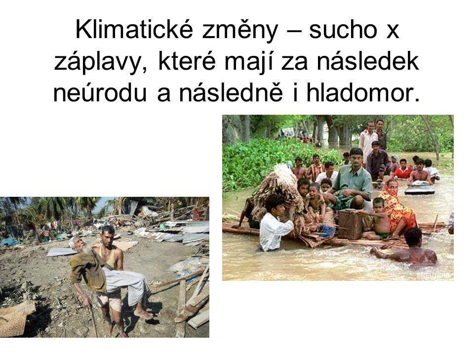Klimatické změny – sucho x záplavy, které mají za následek neúrodu a následně i hladomor.