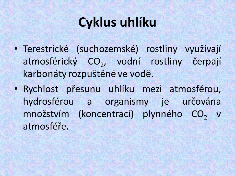 Cyklus uhlíku Terestrické (suchozemské) rostliny využívají atmosférický CO 2, vodní rostliny čerpají karbonáty rozpuštěné ve vodě. Rychlost přesunu uh