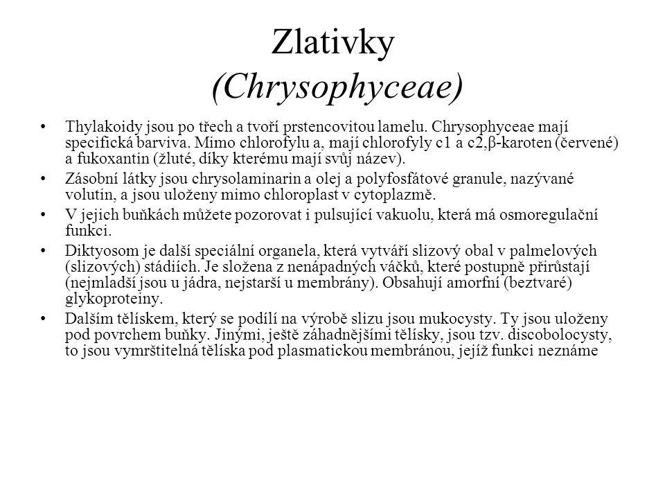 Zlativky (Chrysophyceae) Thylakoidy jsou po třech a tvoří prstencovitou lamelu. Chrysophyceae mají specifická barviva. Mimo chlorofylu a, mají chlorof