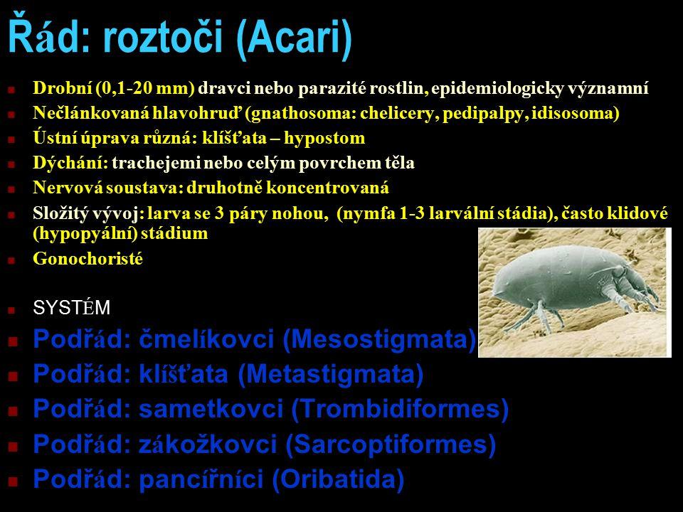 Ř á d: roztoči (Acari) Drobní (0,1-20 mm) dravci nebo parazité rostlin, epidemiologicky významní Nečlánkovaná hlavohruď (gnathosoma: chelicery, pedipalpy, idisosoma) Ústní úprava různá: klíšťata – hypostom Dýchání: trachejemi nebo celým povrchem těla Nervová soustava: druhotně koncentrovaná Složitý vývoj: larva se 3 páry nohou, (nymfa 1-3 larvální stádia), často klidové (hypopyální) stádium Gonochoristé SYST É M Podř á d: čmel í kovci (Mesostigmata) Podř á d: kl íš ťata (Metastigmata) Podř á d: sametkovci (Trombidiformes) Podř á d: z á kožkovci (Sarcoptiformes) Podř á d: panc í řn í ci (Oribatida)