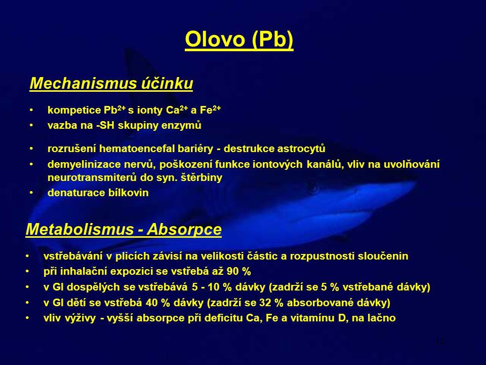 12 Olovo (Pb) Metabolismus - Absorpce vstřebávání v plicích závisí na velikosti částic a rozpustnosti sloučenin při inhalační expozici se vstřebá až 9