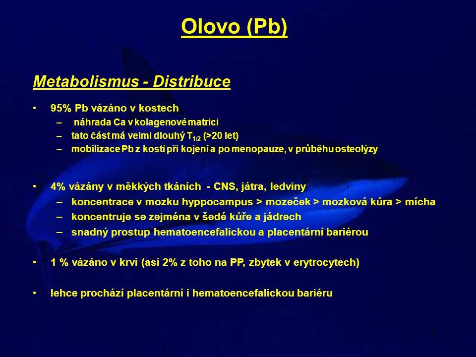 13 Metabolismus - Distribuce 95% Pb vázáno v kostech – náhrada Ca v kolagenové matrici –tato část má velmi dlouhý T 1/2 (>20 let) –mobilizace Pb z kos