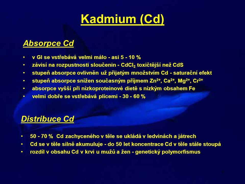 6 Kadmium (Cd) Absorpce Cd v GI se vstřebává velmi málo - asi 5 - 10 % závisí na rozpustnosti sloučenin - CdCl 2 toxičtější než CdS stupeň absorpce ov