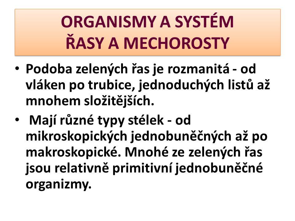 ORGANISMY A SYSTÉM ŘASY A MECHOROSTY Podoba zelených řas je rozmanitá - od vláken po trubice, jednoduchých listů až mnohem složitějších. Mají různé ty