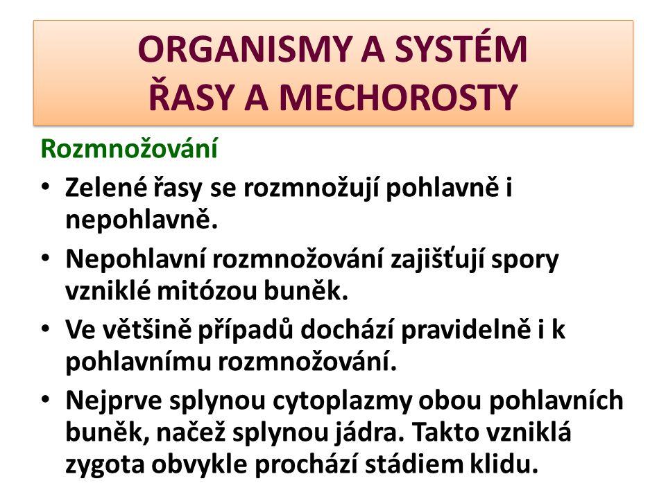 ORGANISMY A SYSTÉM ŘASY A MECHOROSTY Rozmnožování Zelené řasy se rozmnožují pohlavně i nepohlavně.