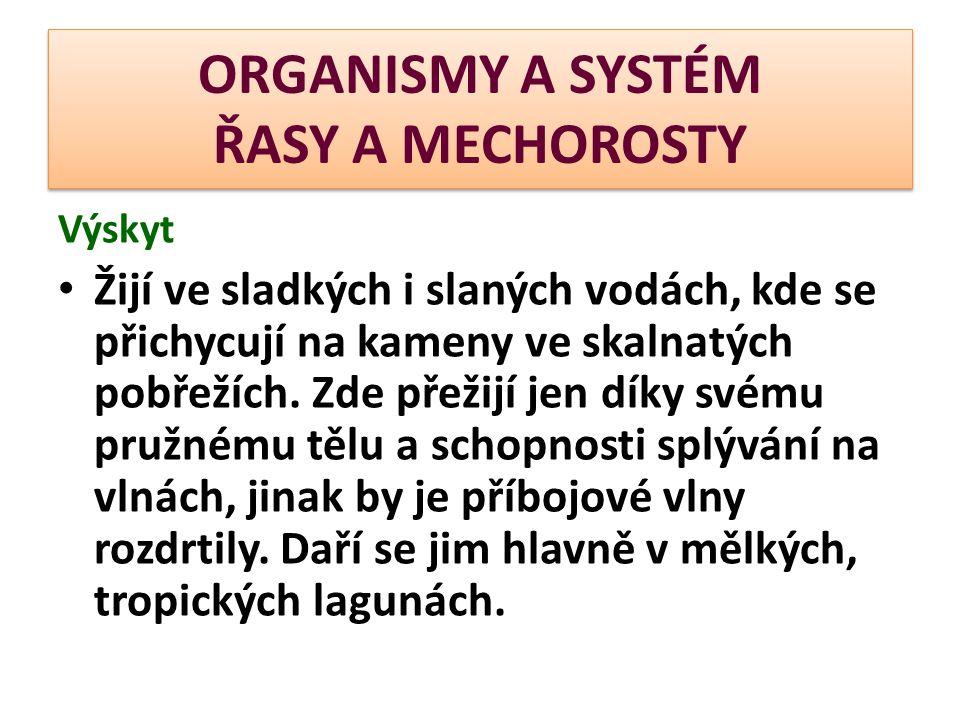 ORGANISMY A SYSTÉM ŘASY A MECHOROSTY Charakteristika  Mechorosty jsou zelené rostliny nižšího vzrůstu (nejvyšším zástupcem je novoguinejský mech dorůstající výšky až 70 cm).