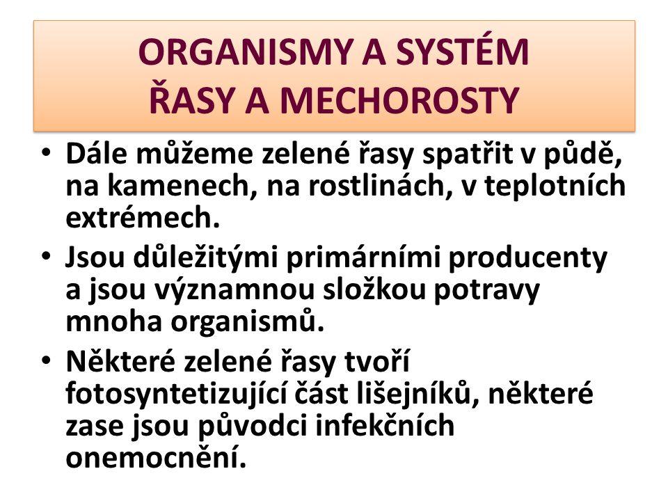 ORGANISMY A SYSTÉM ŘASY A MECHOROSTY  Oplození vyžaduje vodní prostředí - samčí gamety jsou aktivně pohyblivé dvoubičíkaté spermatické buňky  Mechorosty jsou schopné i vegetativního rozmnožování.