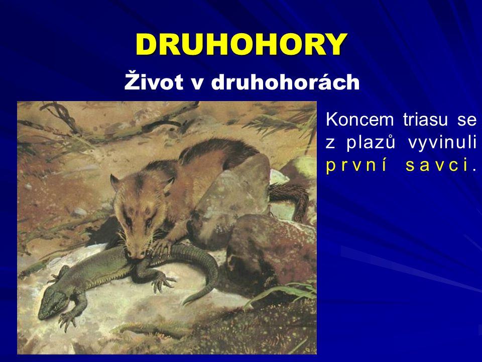Život v druhohorách Koncem triasu se z plazů vyvinuli první savci. DRUHOHORY