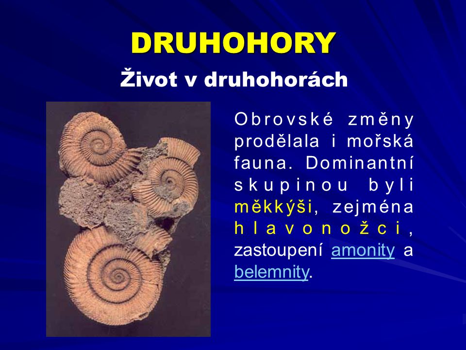Obrovské změny prodělala i mořská fauna. Dominantní skupinou byli měkkýši, zejména hlavonožci, zastoupení amonity aamonity belemnitybelemnity. DRUHOHO