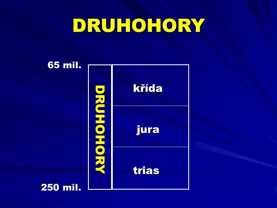 Na počátku druhohor došlo díky pohybům litosférických desek k rozpadu Pangey Laurasie + Gondwana DRUHOHORY