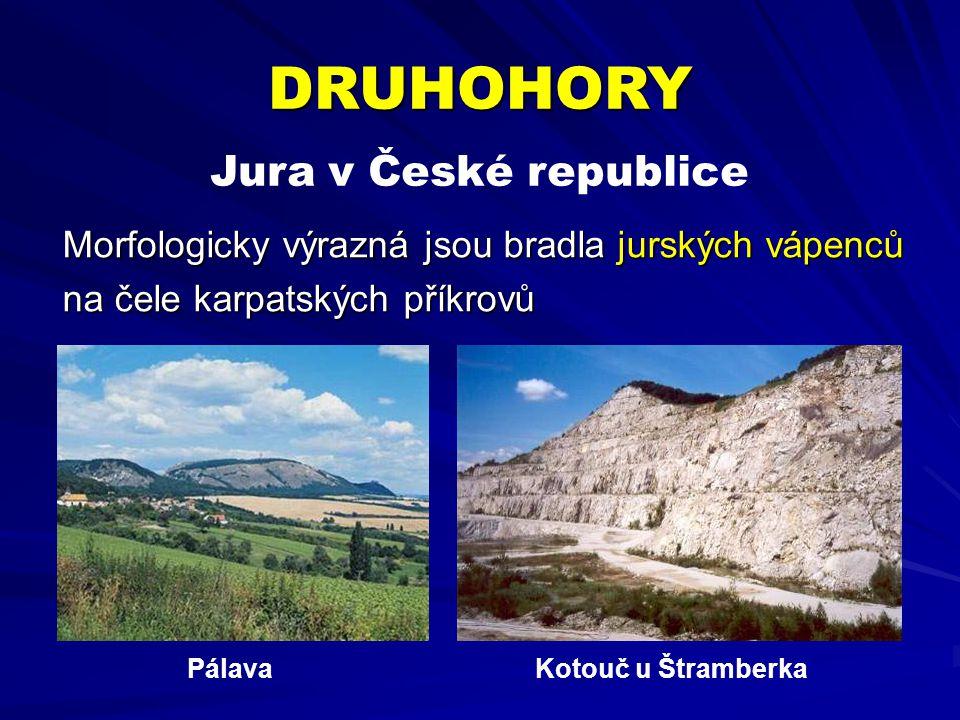 Morfologicky výrazná jsou bradla jurských vápenců na čele karpatských příkrovů Jura v České republice DRUHOHORY PálavaKotouč u Štramberka