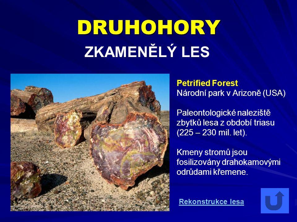 DRUHOHORY ZKAMENĚLÝ LES Petrified Forest Národní park v Arizoně (USA) Paleontologické naleziště zbytků lesa z období triasu (225 – 230 mil. let). Kmen