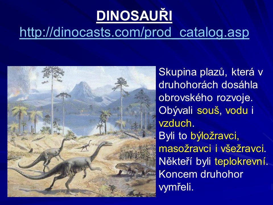 DINOSAUŘI http://dinocasts.com/prod_catalog.asp Skupina plazů, která v druhohorách dosáhla obrovského rozvoje.