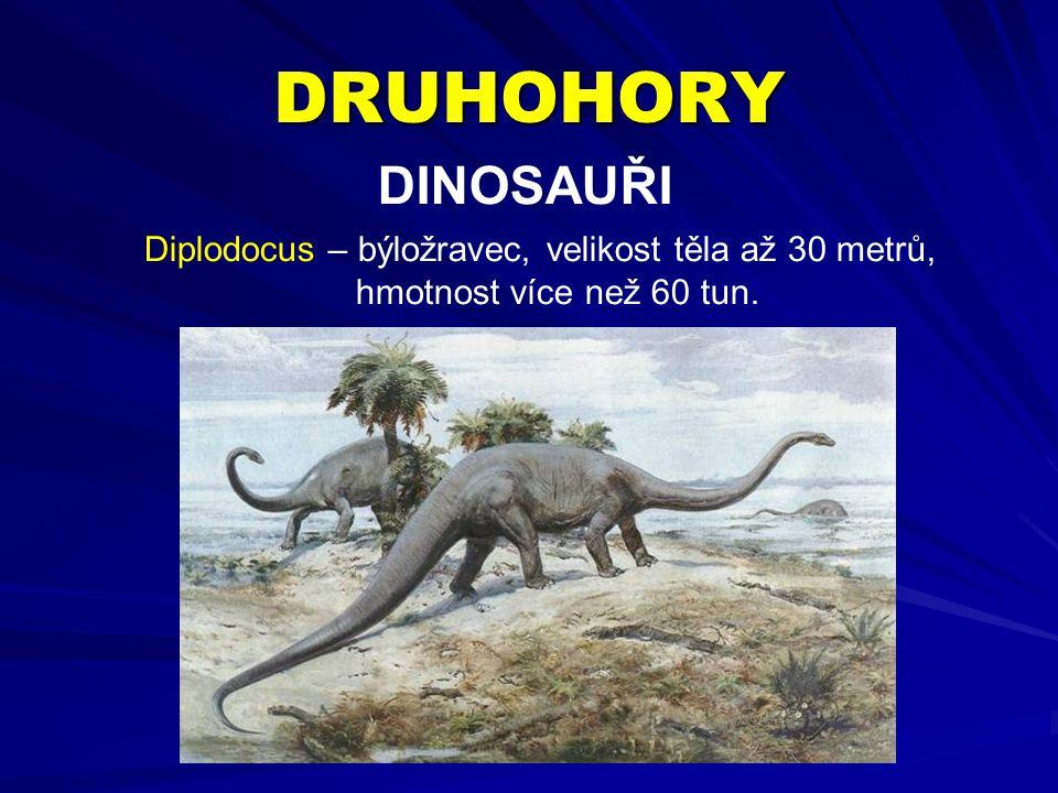 DRUHOHORY DINOSAUŘI Diplodocus – býložravec, velikost těla až 30 metrů, hmotnost více než 60 tun.