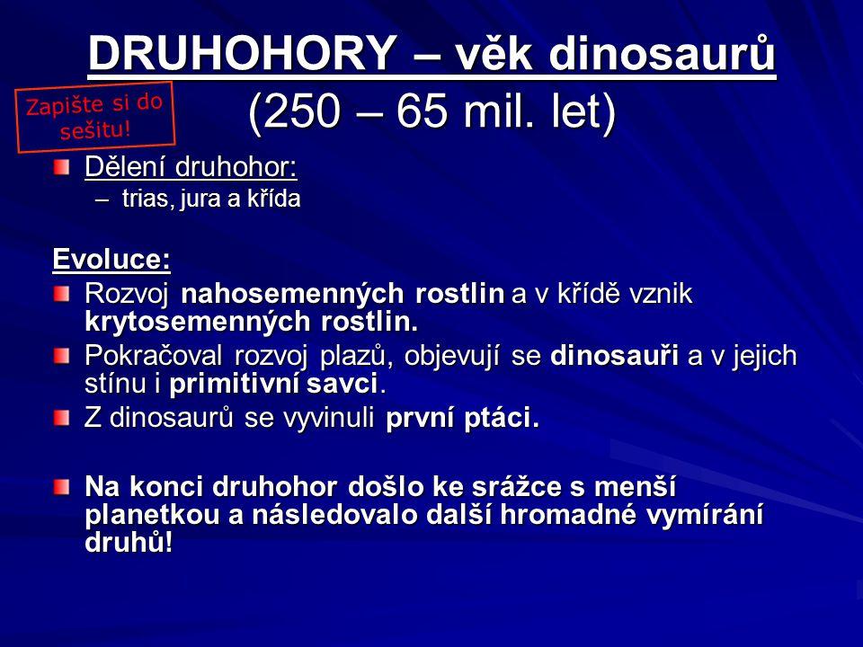 DRUHOHORY – věk dinosaurů (250 – 65 mil. let) Dělení druhohor: –trias, jura a křída Evoluce: Rozvoj nahosemenných rostlin a v křídě vznik krytosemenný