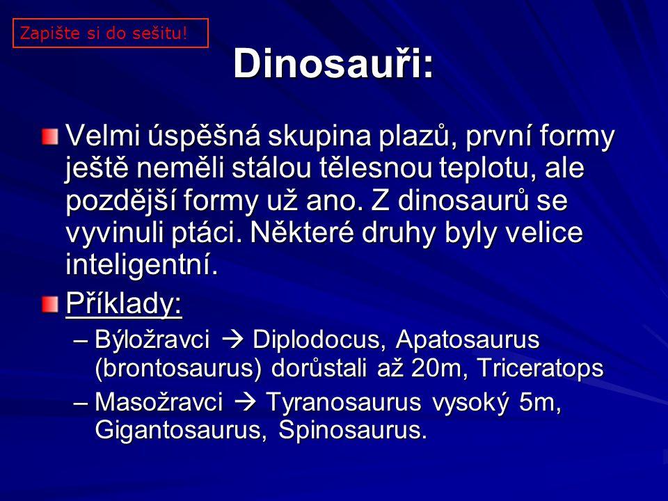 Dinosauři: Velmi úspěšná skupina plazů, první formy ještě neměli stálou tělesnou teplotu, ale pozdější formy už ano. Z dinosaurů se vyvinuli ptáci. Ně