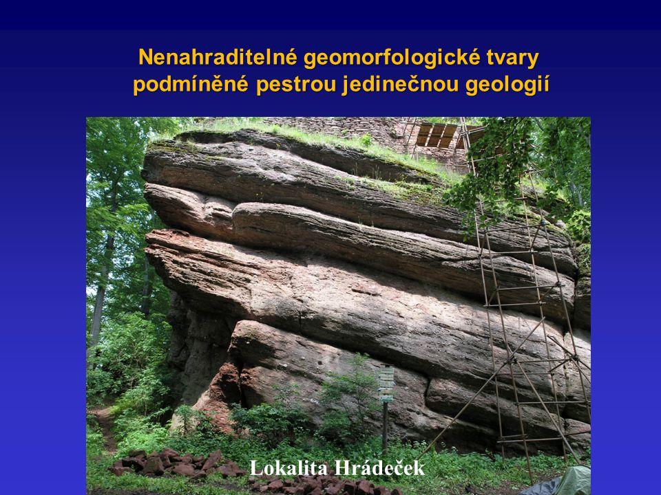 Nenahraditelné geomorfologické tvary podmíněné pestrou jedinečnou geologií podmíněné pestrou jedinečnou geologií Lokalita Hrádeček