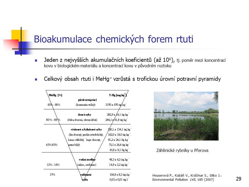 29 Bioakumulace chemických forem rtuti Jeden z nejvyšších akumulačních koeficientů (až 10 6 ), tj. poměr mezi koncentrací kovu v biologickém materiálu