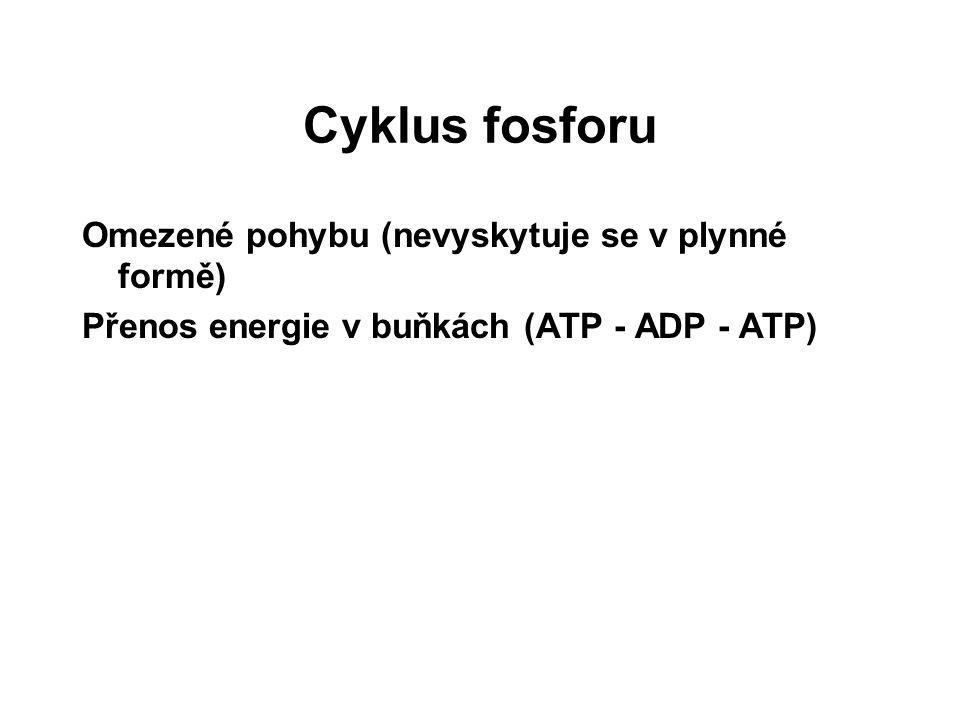 Cyklus fosforu Omezené pohybu (nevyskytuje se v plynné formě) Přenos energie v buňkách (ATP - ADP - ATP)