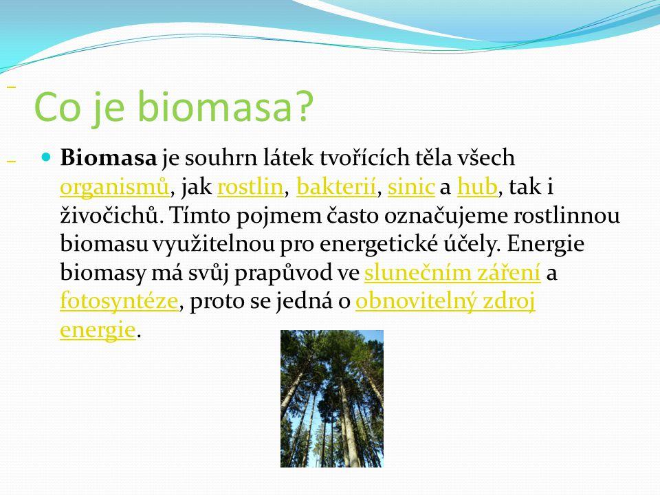 Co je biomasa? Biomasa je souhrn látek tvořících těla všech organismů, jak rostlin, bakterií, sinic a hub, tak i živočichů. Tímto pojmem často označuj