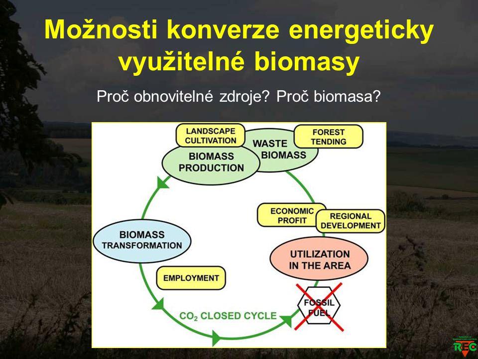 Možnosti konverze energeticky využitelné biomasy Proč obnovitelné zdroje? Proč biomasa?