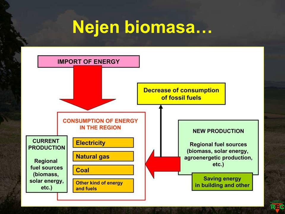 Nejen biomasa…