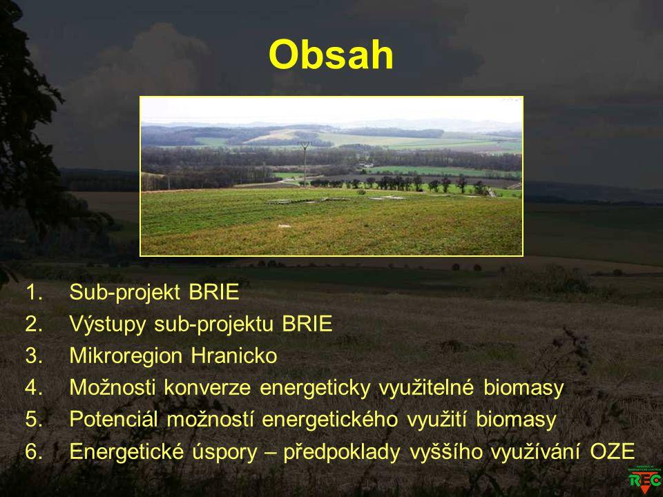 Obsah 1.Sub-projekt BRIE 2.Výstupy sub-projektu BRIE 3.Mikroregion Hranicko 4.Možnosti konverze energeticky využitelné biomasy 5.Potenciál možností en