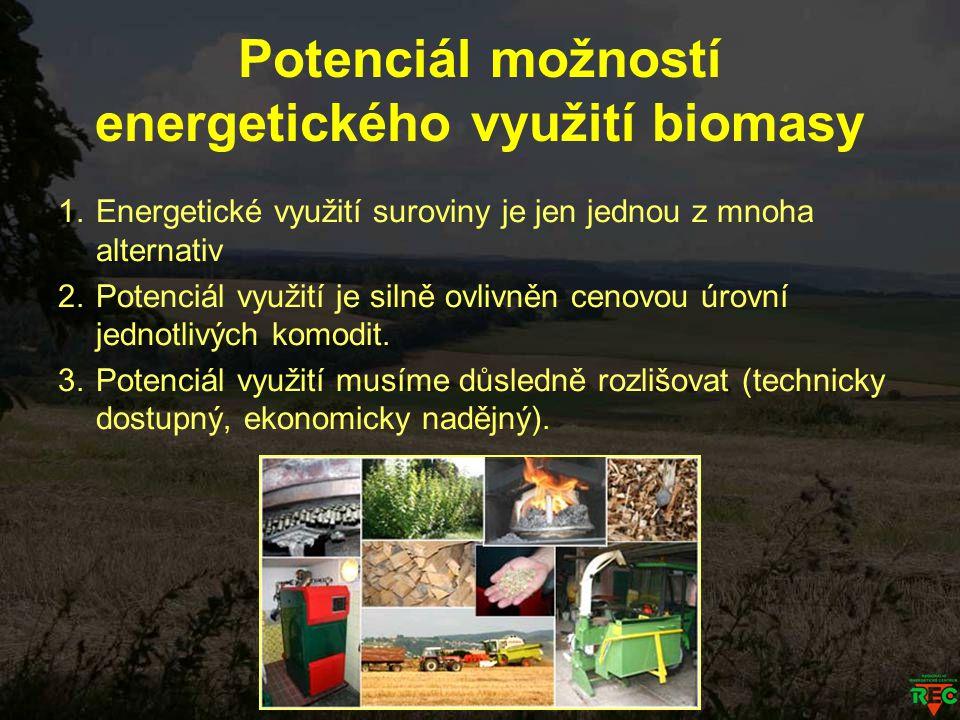 Potenciál možností energetického využití biomasy 1.Energetické využití suroviny je jen jednou z mnoha alternativ 2.Potenciál využití je silně ovlivněn