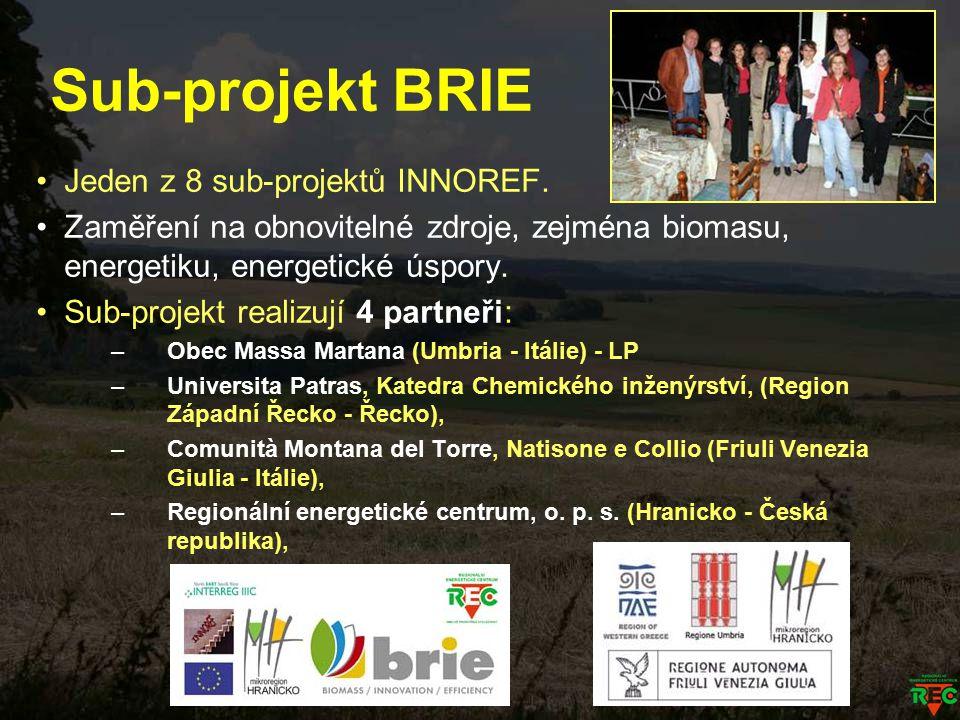 Sub-projekt BRIE Jeden z 8 sub-projektů INNOREF. Zaměření na obnovitelné zdroje, zejména biomasu, energetiku, energetické úspory. Sub-projekt realizuj