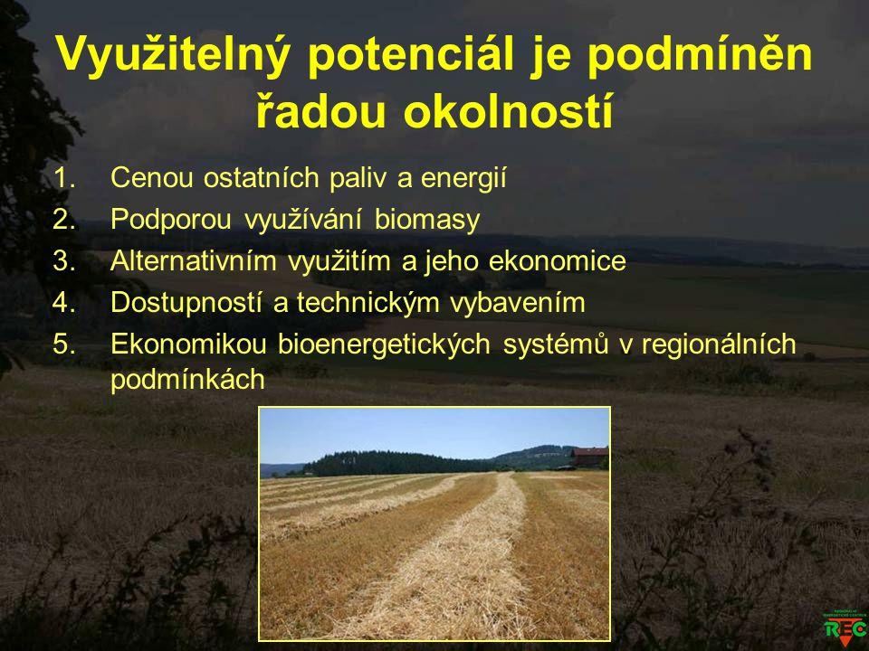 Využitelný potenciál je podmíněn řadou okolností 1.Cenou ostatních paliv a energií 2.Podporou využívání biomasy 3.Alternativním využitím a jeho ekonom
