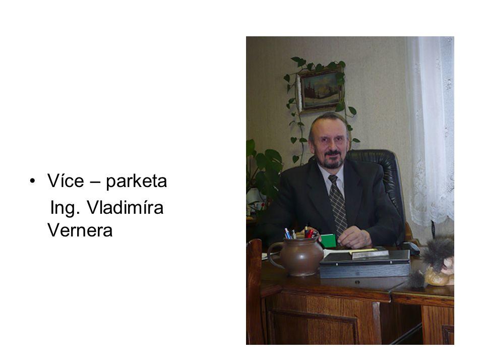 Více – parketa Ing. Vladimíra Vernera