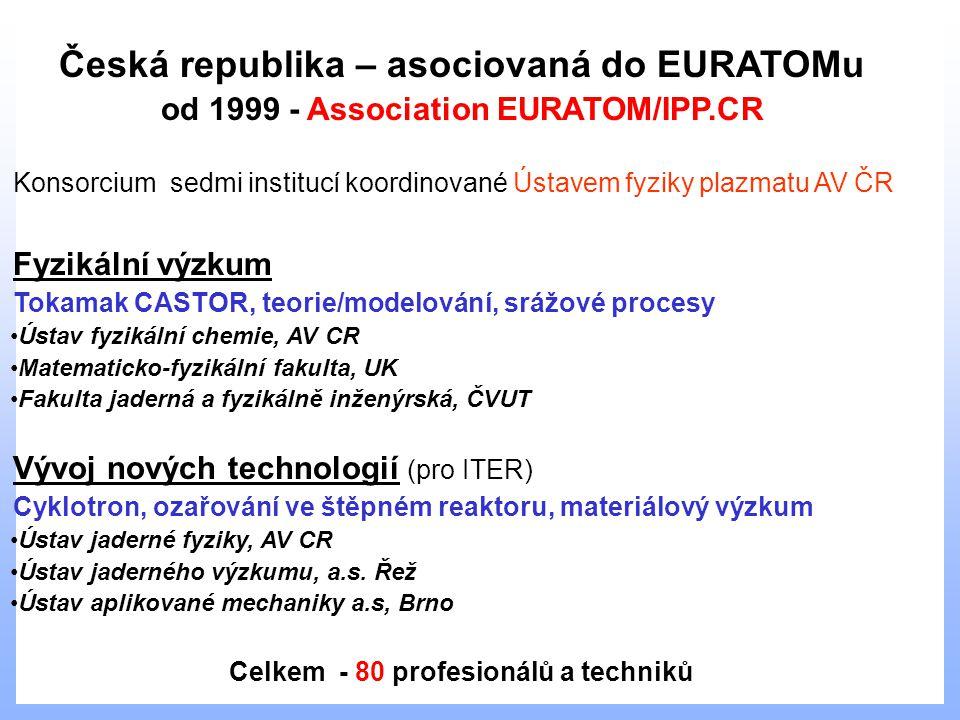 Česká republika – asociovaná do EURATOMu od 1999 - Association EURATOM/IPP.CR Konsorcium sedmi institucí koordinované Ústavem fyziky plazmatu AV ČR Fyzikální výzkum Tokamak CASTOR, teorie/modelování, srážové procesy Ústav fyzikální chemie, AV CR Matematicko-fyzikální fakulta, UK Fakulta jaderná a fyzikálně inženýrská, ČVUT Vývoj nových technologií (pro ITER) Cyklotron, ozařování ve štěpném reaktoru, materiálový výzkum Ústav jaderné fyziky, AV CR Ústav jaderného výzkumu, a.s.