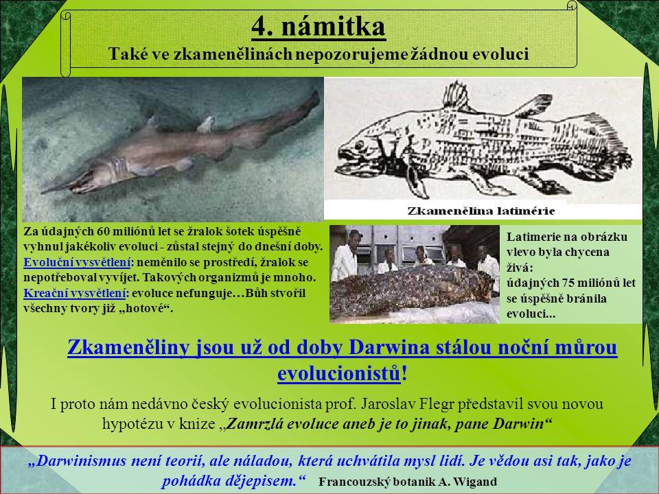 4. námitka Také ve zkamenělinách nepozorujeme žádnou evoluci Zkameněliny jsou už od doby Darwina stálou noční můrou evolucionistů! Za údajných 60 mili